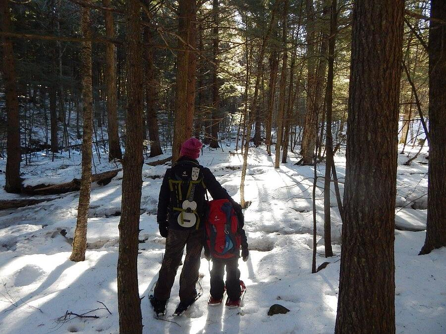 Deuter, Bags, snow, woods, travel, kids