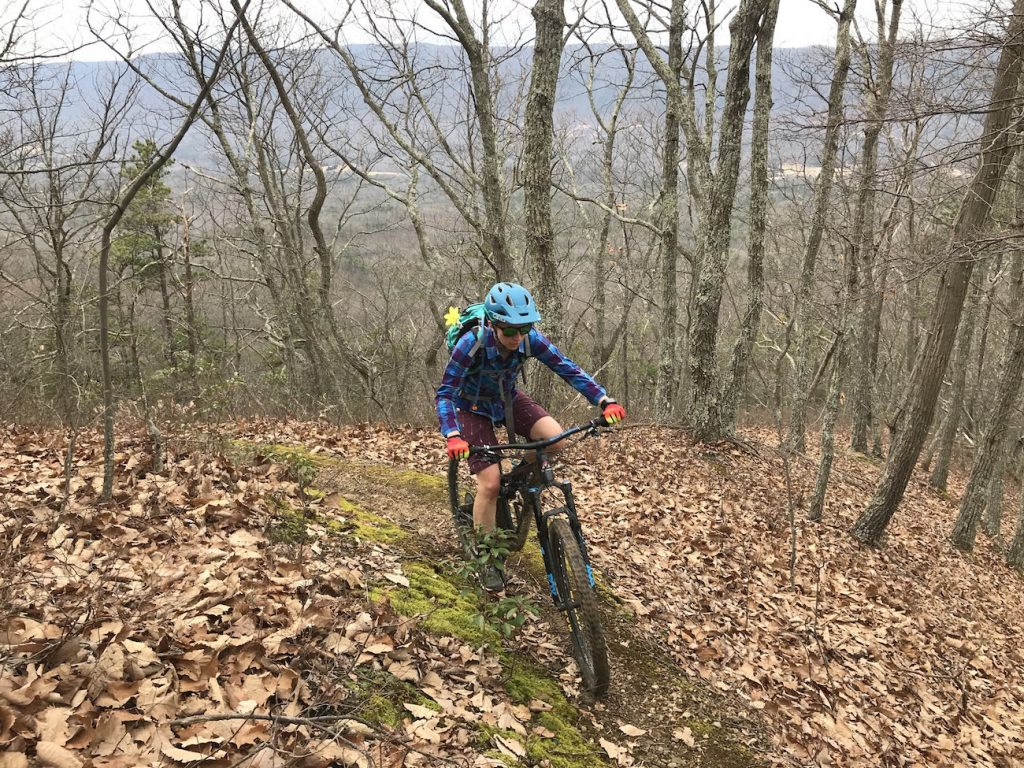Biking-in-the-North-Mountain-Trail-System-1024x768